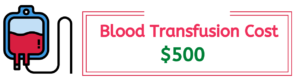 cat blood transfusion cost