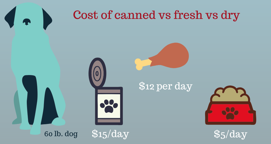 myollie dog food reviews cost vs canned vs dry