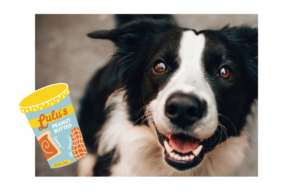 is skippy peanut butter safe for dogs
